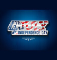 independence day usa vector image vector image