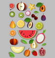 paper cut craft style summer fruits and vector image