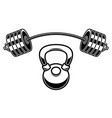 barbell and kettlebell in engraving style design vector image