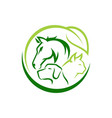 horse dog cat animal logo design template