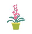 houseplant in flowerpot isolated cartoon banner vector image vector image