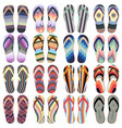 set of beach slippers vector image