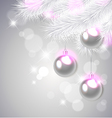 white pine branches and decorations vector image vector image