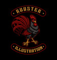 a colorful a rooster vector image