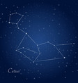 cetus whale constellation at starry night sky vector image vector image