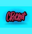 cricket hand drawn modern brush lettering vector image vector image