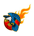 Flying Bald Eagle And Flaming Basketball vector image