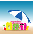 summer accesoir in colorful design vector image vector image