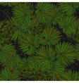Tropical island seamless pattern Palm leaves vector image vector image