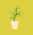 flat shading style icon flower in pot aloe vector image