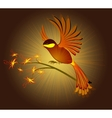 Bird of Paradise with flowers on a dark background vector image vector image