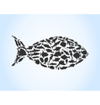 fish of fishes vector image vector image