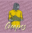Gorilla with grapes