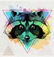 hipster animal raccoon on artistic polygon vector image vector image