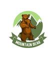 Mountain Bear Logo vector image vector image