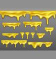 realistic set dripping gold liquid honey vector image