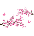 sacura branches vector image