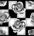 white roses on chessboard background vector image vector image