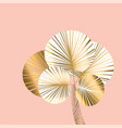 decorative pastel rosy and gold color palm vector image vector image