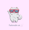 fashionable cat with glasses a cartoon animal vector image