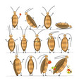 funny cockroaches set for your design vector image