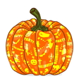 Isolated Pumpkin lantern vector image vector image