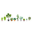 set decorative houseplants planted in ceramic pots vector image