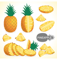 Set of pineapple fruit in various styles vector image