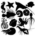 silhouette set with marine life organisms vector image vector image