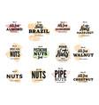 organic food logos set vector image