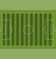 a realistic textured grass football soccer field vector image