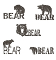 Collection of bear logotypes vector image vector image