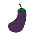 delicious vegetable eggplant vector image