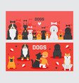 dog banners pet and cute boy cartoon characters vector image