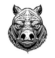 head wild angry boar in vintage monochrome vector image vector image
