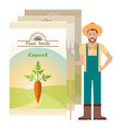 pack carrot seeds icon vector image