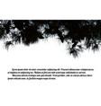 pine branch tree vector image vector image