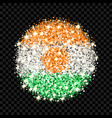 the niger flag sparkling badge vector image vector image