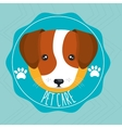dog pet care icon vector image