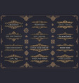 collection nice template vector image vector image
