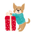 cute dog in warm winter sweater with gift vector image vector image