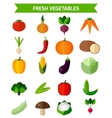 Fresh vegetables icons set vector image