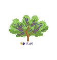 plum garden fruit tree with name vector image vector image