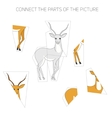 Puzzle game for children gazelle vector image vector image