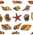 seamless pattern shells vector image