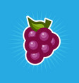 simple grape icon vector image vector image
