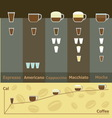 Simple infographic of hot coffee drinks calories vector image vector image
