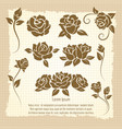vintage poster with roses flowers vector image