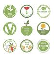 Vegan Day vector image