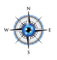 blue realistic eyeball on a compass vector image